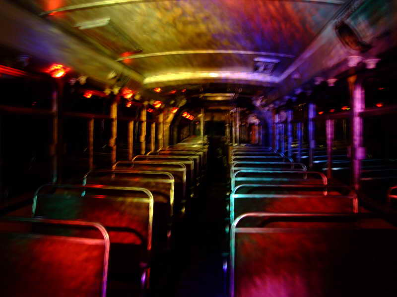 Partybus lights at Save  the Bees.